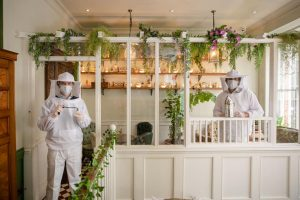 Maintaining PPE regulations after virus at Mr Fogg's House of Botanicals