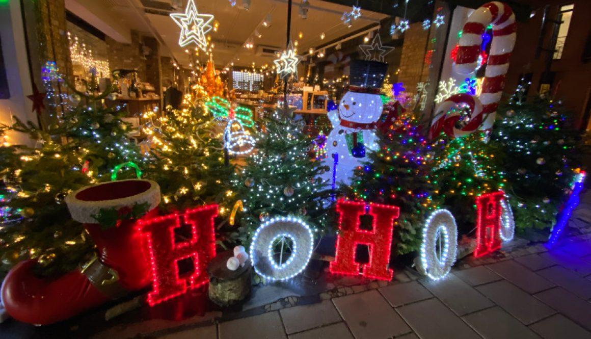 Magical Christmas Display