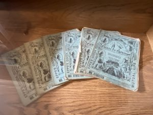 Dickens Novels Household Editions