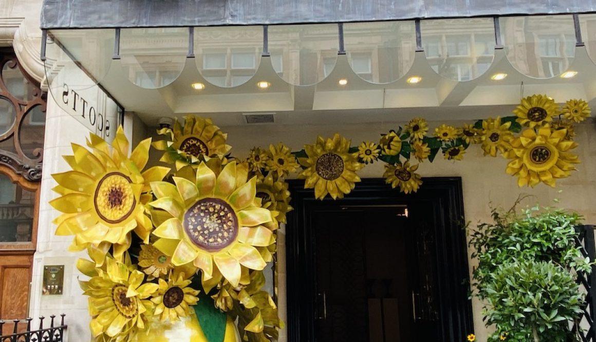Van Gogh House and Other Van Gogh Experiences