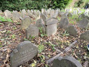 Graves - Pet Cemetery in Hyde Park