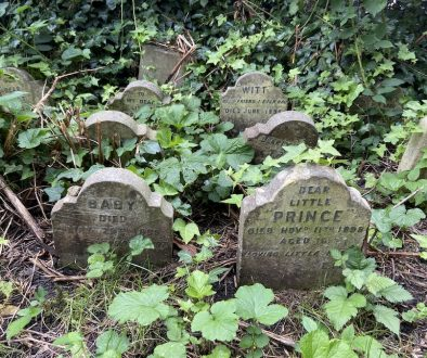 The Real Pet Cemetery